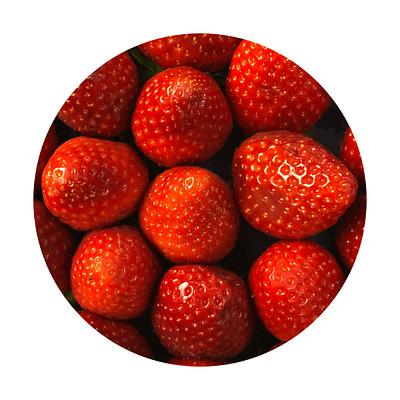 Eiszeit Erdbeer